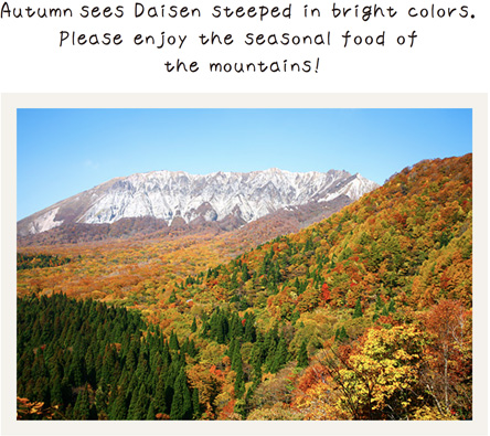 Autumn sees Daisen steeped in bright colors.  Please enjoy the seasonal food of the mountains!