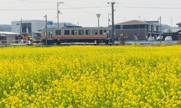 """カメラ女子必見!!期間限定""""春の列車撮影""""と写真美術館"""